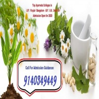 Guidance For BAMS Admission in MD Ayurvedic Medical College Agra